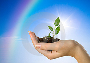 born-again-spiritual-meaning-dreamstime-5028145
