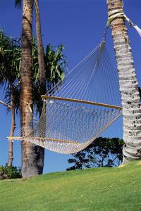 hammock-pamper-ca