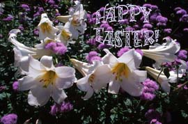 Easter-Lilies-clipart.com