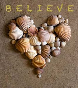 Heart-shells-believe-ca-cher