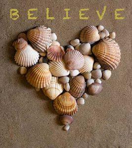 Heart-shells-believe-ca-cher