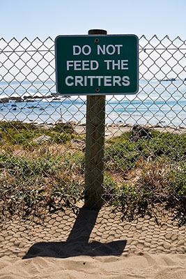 DoNotFeedCritters